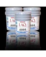 FIberlock IAQ 6000 Mold coating remediation